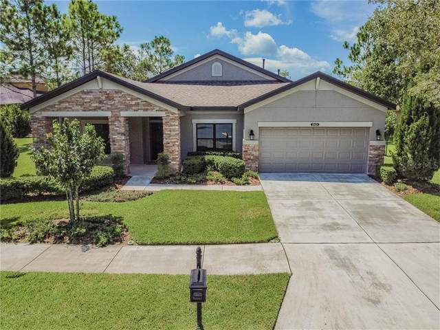 20430 Rose Cottage Way, Land O Lakes, FL 34637 (MLS #T3258023) :: Team Bohannon Keller Williams, Tampa Properties