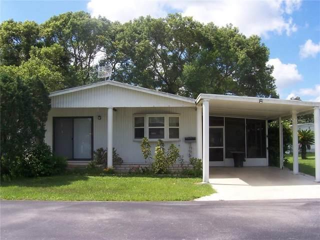 37412 Tropical Drive, Zephyrhills, FL 33541 (MLS #T3258028) :: Team Borham at Keller Williams Realty