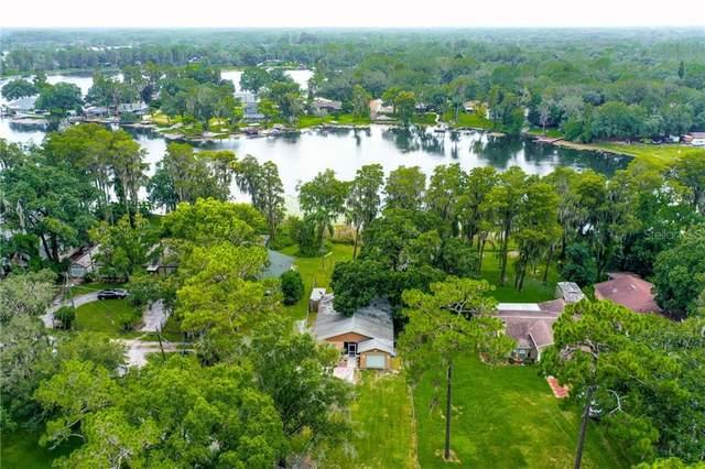 5714 Half Moon Lake Road, Tampa, FL 33625 (MLS #T3258032) :: Team Bohannon Keller Williams, Tampa Properties