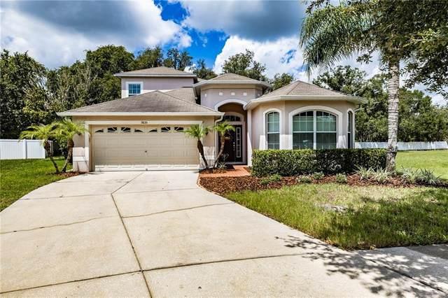 9835 Bowden Mill Court, Land O Lakes, FL 34638 (MLS #T3258042) :: Team Bohannon Keller Williams, Tampa Properties