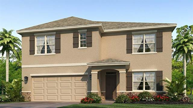 17124 Harvest Moon Way, Bradenton, FL 34211 (MLS #T3258047) :: Gate Arty & the Group - Keller Williams Realty Smart
