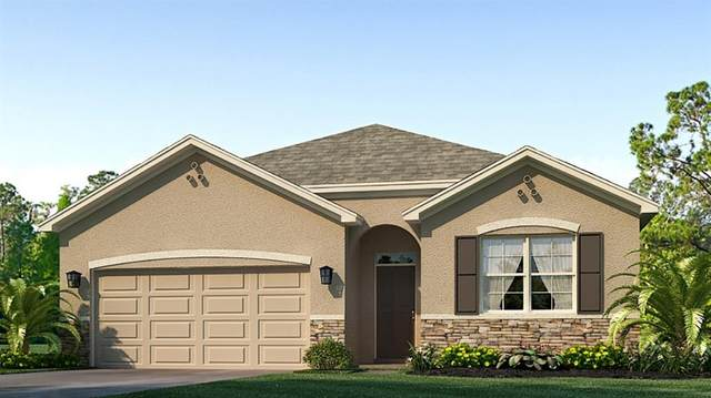 17120 Harvest Moon Way, Bradenton, FL 34211 (MLS #T3258056) :: Gate Arty & the Group - Keller Williams Realty Smart