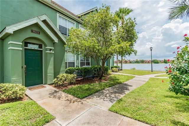 9028 Lake Chase Island Way, Tampa, FL 33626 (MLS #T3258061) :: Griffin Group
