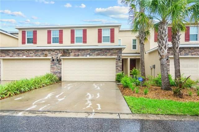 13213 Canopy Creek Drive, Tampa, FL 33625 (MLS #T3258095) :: Team Borham at Keller Williams Realty