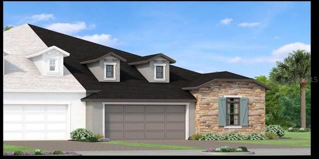 4361 Barletta Court, Wesley Chapel, FL 33543 (MLS #T3258111) :: Team Bohannon Keller Williams, Tampa Properties