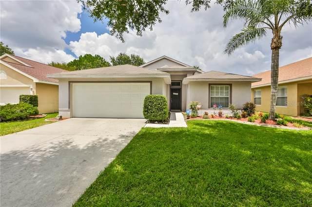 4523 Wild Plum Lane, Lutz, FL 33558 (MLS #T3258115) :: Team Bohannon Keller Williams, Tampa Properties