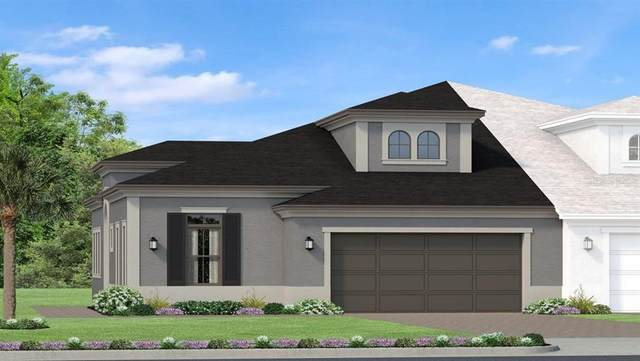 4353 Barletta Court, Wesley Chapel, FL 33543 (MLS #T3258117) :: Team Bohannon Keller Williams, Tampa Properties