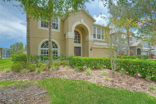 12948 Solola Way, Trinity, FL 34655 (MLS #T3258129) :: Team Bohannon Keller Williams, Tampa Properties