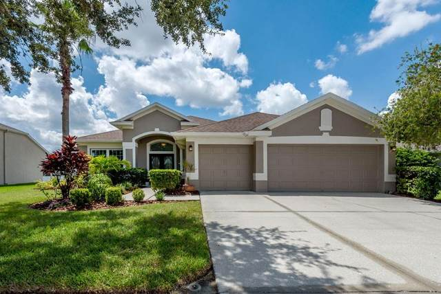 22912 Bay Cedar Drive, Land O Lakes, FL 34639 (MLS #T3258131) :: Baird Realty Group