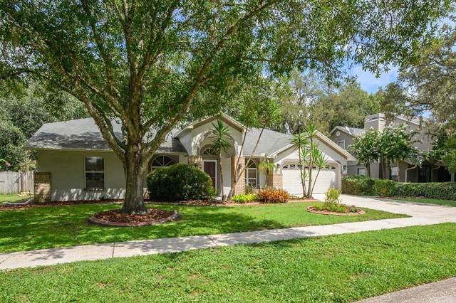 1408 Clarion Drive, Valrico, FL 33596 (MLS #T3258139) :: GO Realty