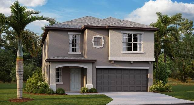 3590 Hanover Drive, New Port Richey, FL 34653 (MLS #T3258200) :: Florida Real Estate Sellers at Keller Williams Realty