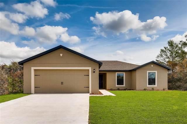 1251 Helliwell Street NW, Palm Bay, FL 32909 (MLS #T3258246) :: Team Bohannon Keller Williams, Tampa Properties