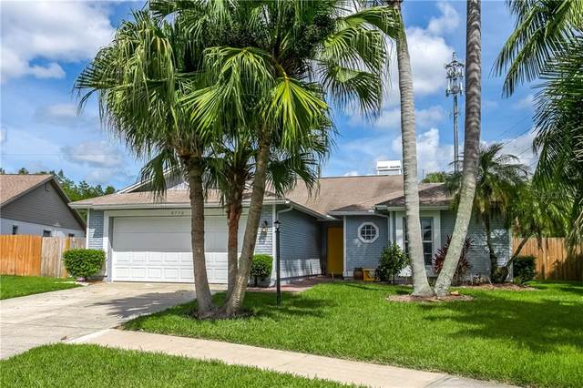 8736 Hampden Drive, Tampa, FL 33626 (MLS #T3258247) :: Griffin Group