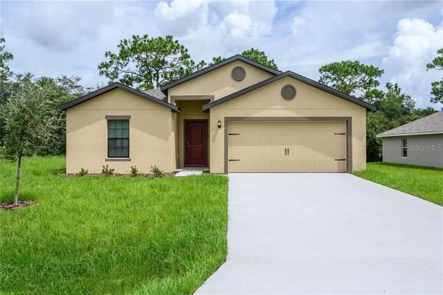 954 St Johns Street SE, Palm Bay, FL 32909 (MLS #T3258255) :: Team Bohannon Keller Williams, Tampa Properties
