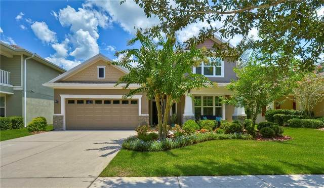 16013 Courtside View Drive, Lithia, FL 33547 (MLS #T3258285) :: The Duncan Duo Team