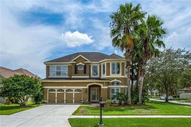 11244 Blacksmith Drive, Tampa, FL 33626 (MLS #T3258312) :: Cartwright Realty