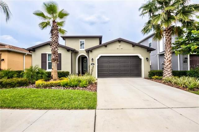 17908 Woodland View Drive, Lutz, FL 33548 (MLS #T3258331) :: Team Bohannon Keller Williams, Tampa Properties