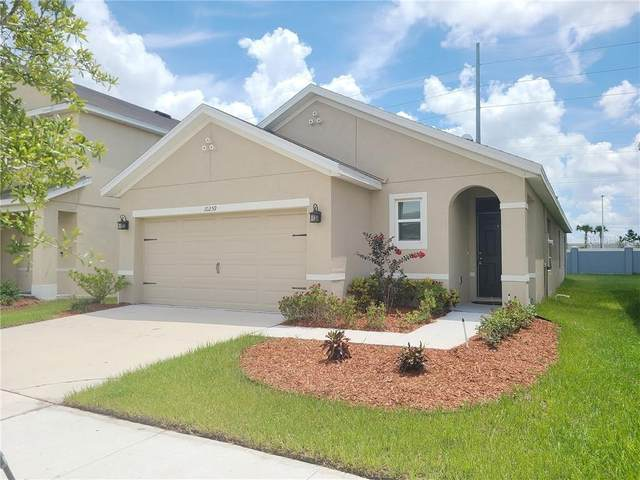 10259 Geese Trail Circle, Sun City Center, FL 33573 (MLS #T3258348) :: Dalton Wade Real Estate Group