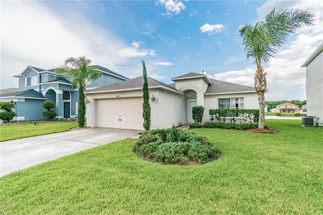 25448 Geddy Drive, Land O Lakes, FL 34639 (MLS #T3258352) :: Team Bohannon Keller Williams, Tampa Properties