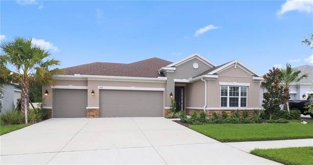 17661 Bright Wheat Drive, Lithia, FL 33547 (MLS #T3258353) :: The Heidi Schrock Team