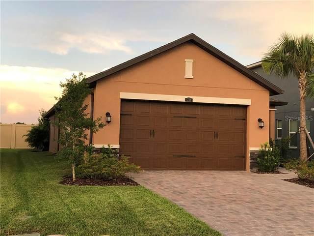 4738 Tramanto Lane, Wesley Chapel, FL 33543 (MLS #T3258420) :: Griffin Group