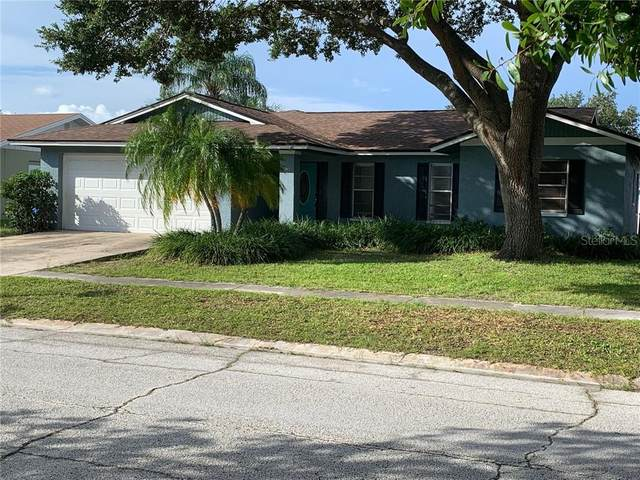 10409 Out Island Drive, Tampa, FL 33615 (MLS #T3258426) :: Cartwright Realty
