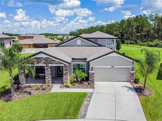 8144 Sequester Loop, Land O Lakes, FL 34637 (MLS #T3258500) :: Cartwright Realty