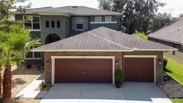 15725 Starling Water Drive, Lithia, FL 33547 (MLS #T3258532) :: Team Bohannon Keller Williams, Tampa Properties