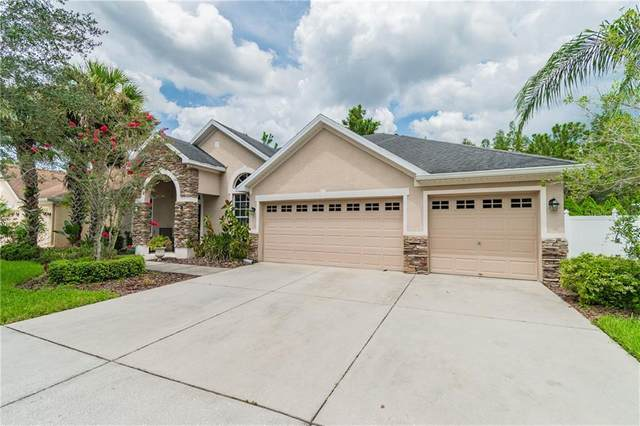 16153 Colchester Palms Drive, Tampa, FL 33647 (MLS #T3258537) :: GO Realty