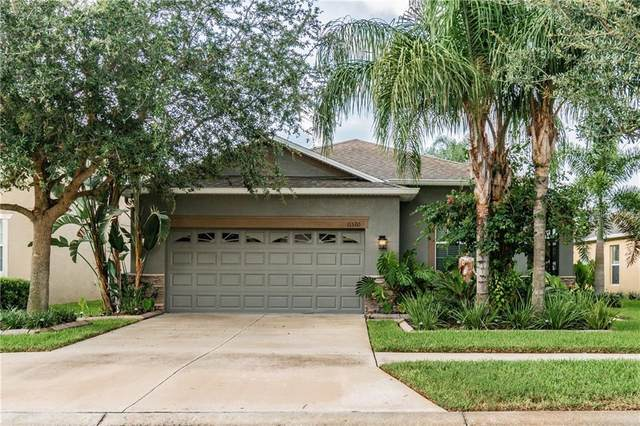 11520 Ashton Field Avenue, Riverview, FL 33579 (MLS #T3258549) :: The Figueroa Team