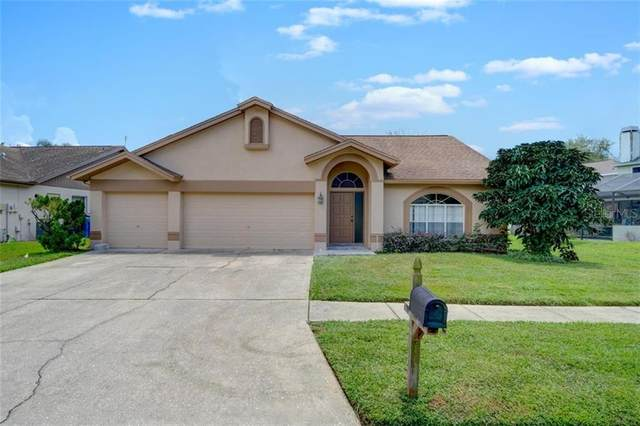 11430 Glenmont Drive, Tampa, FL 33635 (MLS #T3258588) :: Griffin Group
