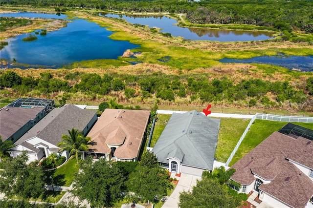 1659 Bonita Bluff Court, Ruskin, FL 33570 (MLS #T3258599) :: Team Bohannon Keller Williams, Tampa Properties