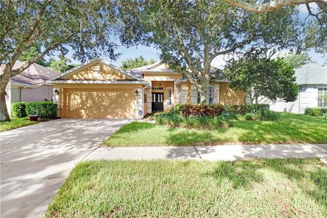 10107 Cannon Drive, Riverview, FL 33578 (MLS #T3258632) :: Premium Properties Real Estate Services