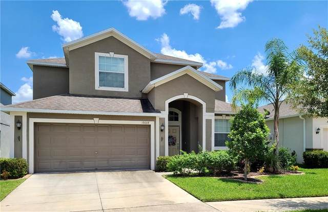 16608 Magnolia Reserve Place, Wimauma, FL 33598 (MLS #T3258648) :: Medway Realty