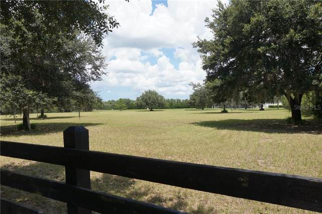 18391 Wayne Road, Odessa, FL 33556 (MLS #T3258664) :: Griffin Group