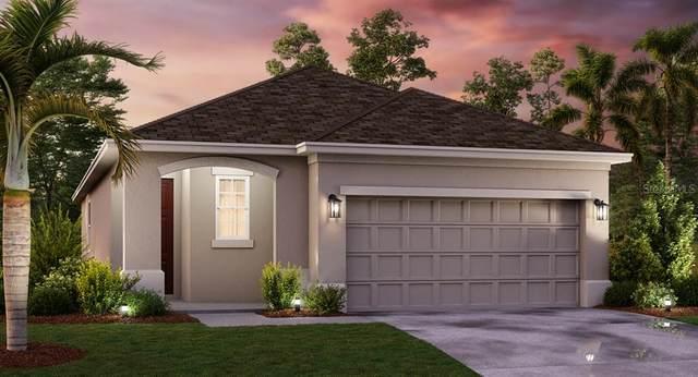 2850 Black Birch Drive, Ocoee, FL 34761 (MLS #T3258687) :: Team Bohannon Keller Williams, Tampa Properties