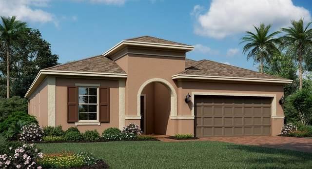 2219 Mountain Pine Street, Ocoee, FL 34761 (MLS #T3258693) :: GO Realty