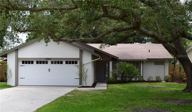 10506 Nile Court, Tampa, FL 33615 (MLS #T3258736) :: Ramos Professionals Group