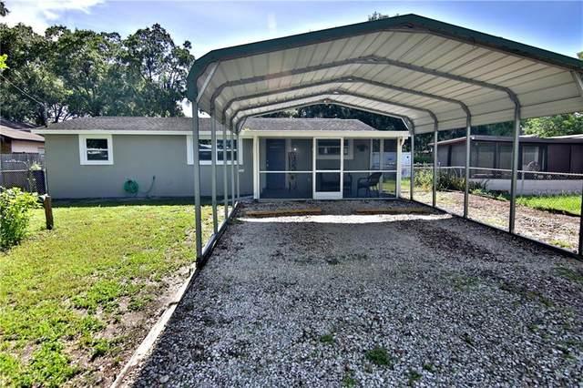 5916 N Packwood Avenue, Tampa, FL 33604 (MLS #T3258748) :: Premier Home Experts