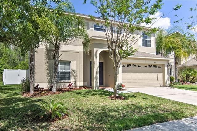 18134 Bahama Bay Drive, Tampa, FL 33647 (MLS #T3258760) :: Cartwright Realty