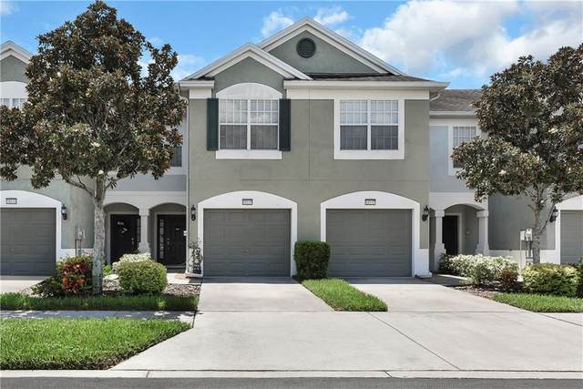 10139 Pink Palmata Court, Riverview, FL 33578 (MLS #T3258770) :: Carmena and Associates Realty Group