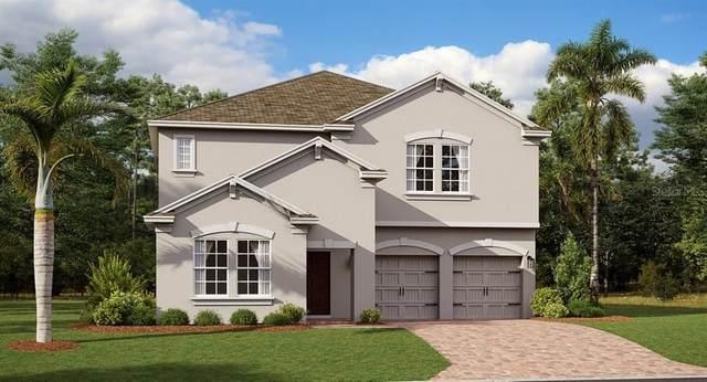 2105 Mountain Pine Street, Ocoee, FL 34761 (MLS #T3258787) :: Team Bohannon Keller Williams, Tampa Properties