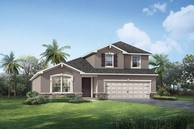 11559 Cedar Valley Drive #43, Riverview, FL 33578 (MLS #T3258789) :: Premier Home Experts