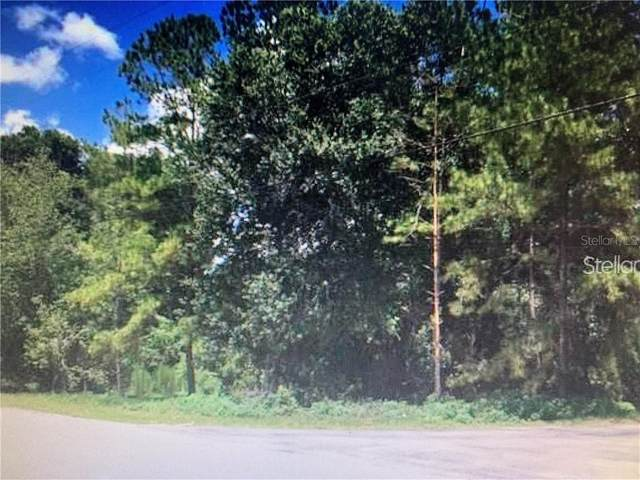 Kent Grove Road, Spring Hill, FL 34610 (MLS #T3258797) :: Griffin Group