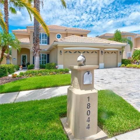 18044 Cozumel Isle Drive, Tampa, FL 33647 (MLS #T3258802) :: Ramos Professionals Group