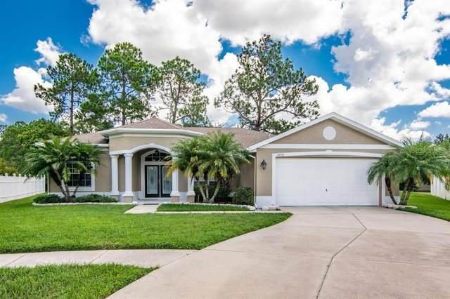 21636 Silver Bay Place, Land O Lakes, FL 34637 (MLS #T3258818) :: Baird Realty Group
