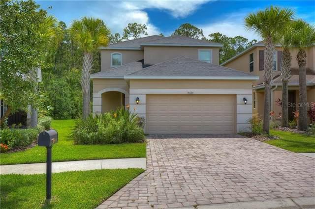 16026 Bella Woods Drive, Tampa, FL 33647 (MLS #T3258849) :: Cartwright Realty