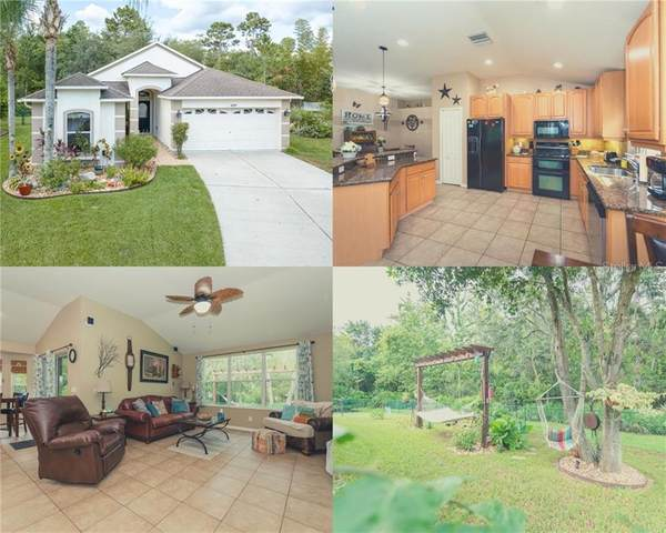 10838 Wild Cotton Court, Land O Lakes, FL 34638 (MLS #T3258854) :: Cartwright Realty