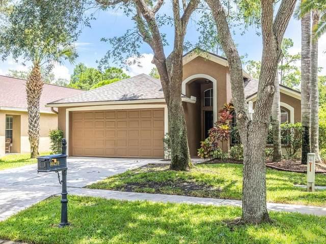 10239 Woodford Bridge Street, Tampa, FL 33626 (MLS #T3258864) :: Team Bohannon Keller Williams, Tampa Properties