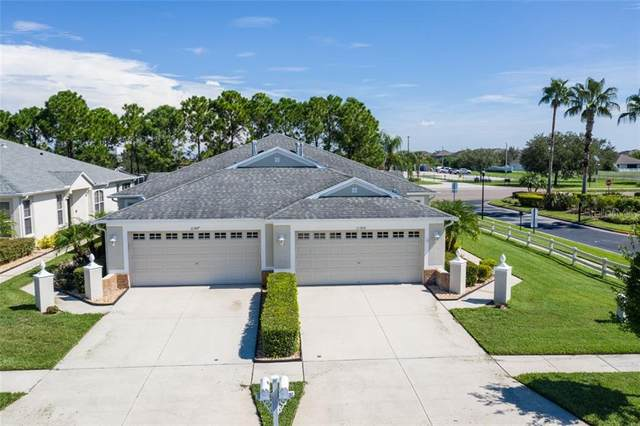 11305 Cambray Creek Loop, Riverview, FL 33579 (MLS #T3258895) :: Ramos Professionals Group